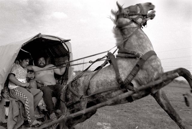 Wandernomaden auf dem Weg zurück in ihr Zeltlager in der Nähe der nordrumänischen Stadt Marghita.
