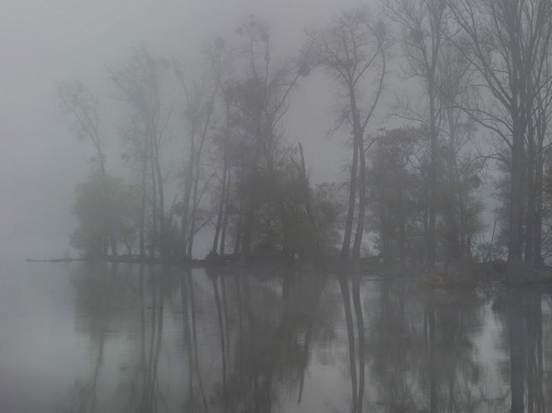 Aus der Serie »Fluss«.