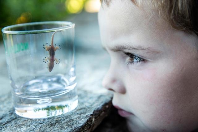 Das Gewinnerfoto in der Kategorie Einzelbild zum Thema »Der zündende Moment – das Interesse an Wissenschaft erwacht«.