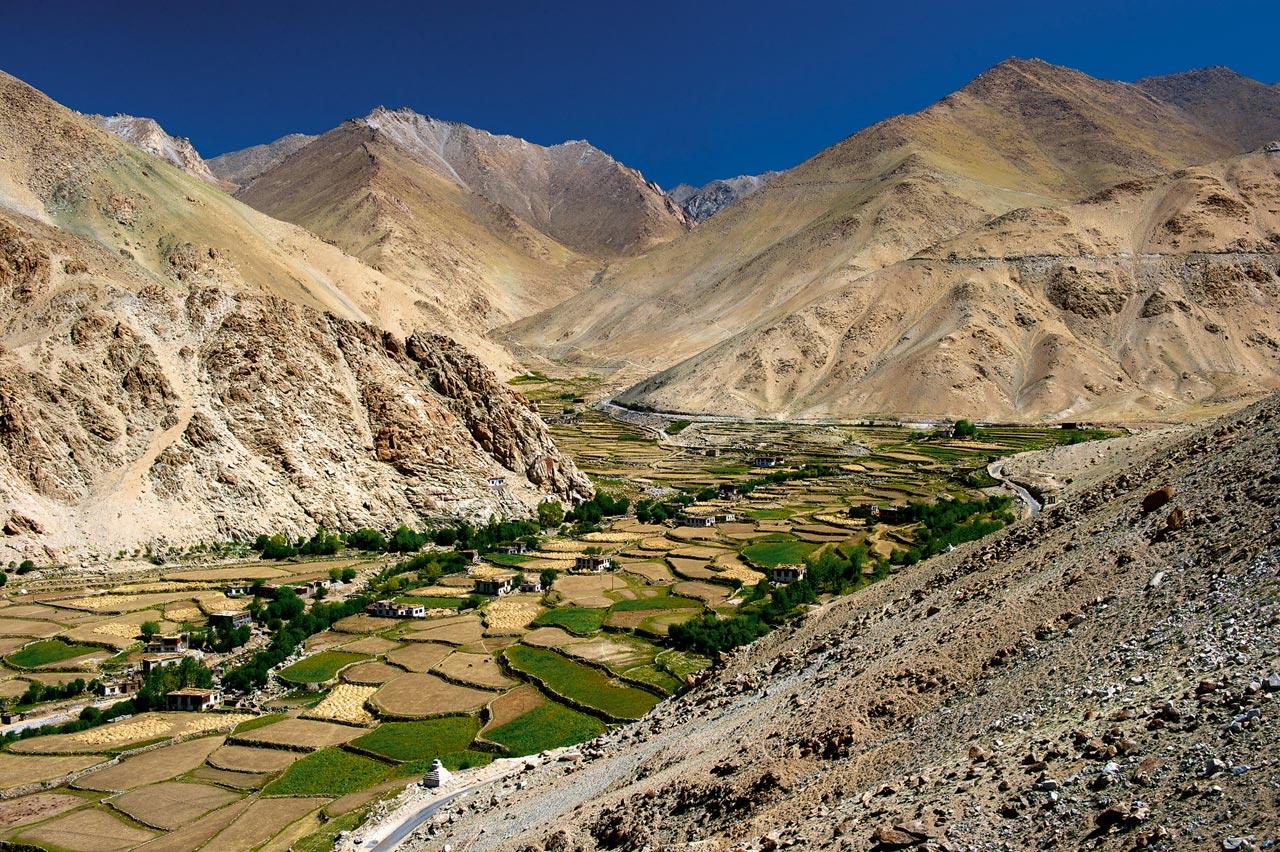 Terrassenanbau in Ladakh, Indien.