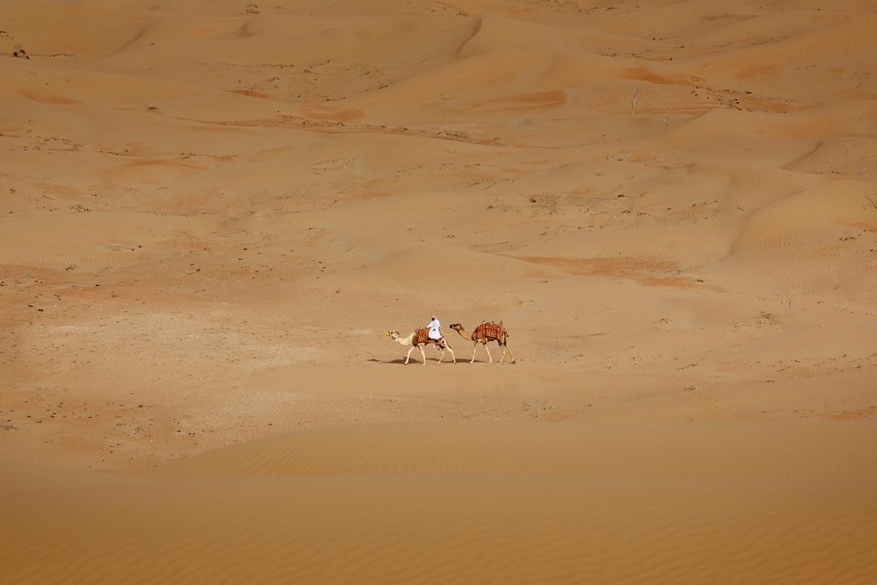 Motiv aus der Ausstellung »Different Dubai«.