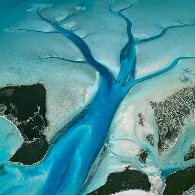 Der Tidenhub auf den Bahamas liegt bei etwa einem Meter. Bei Ebbe sammelt sich das Meerwasser in Prielen, tiefen Rinnen im weißen Kalkschlamm, die wie Adern den flachen Meeresboden durchziehen. Priel, Long Island, Bahamas.