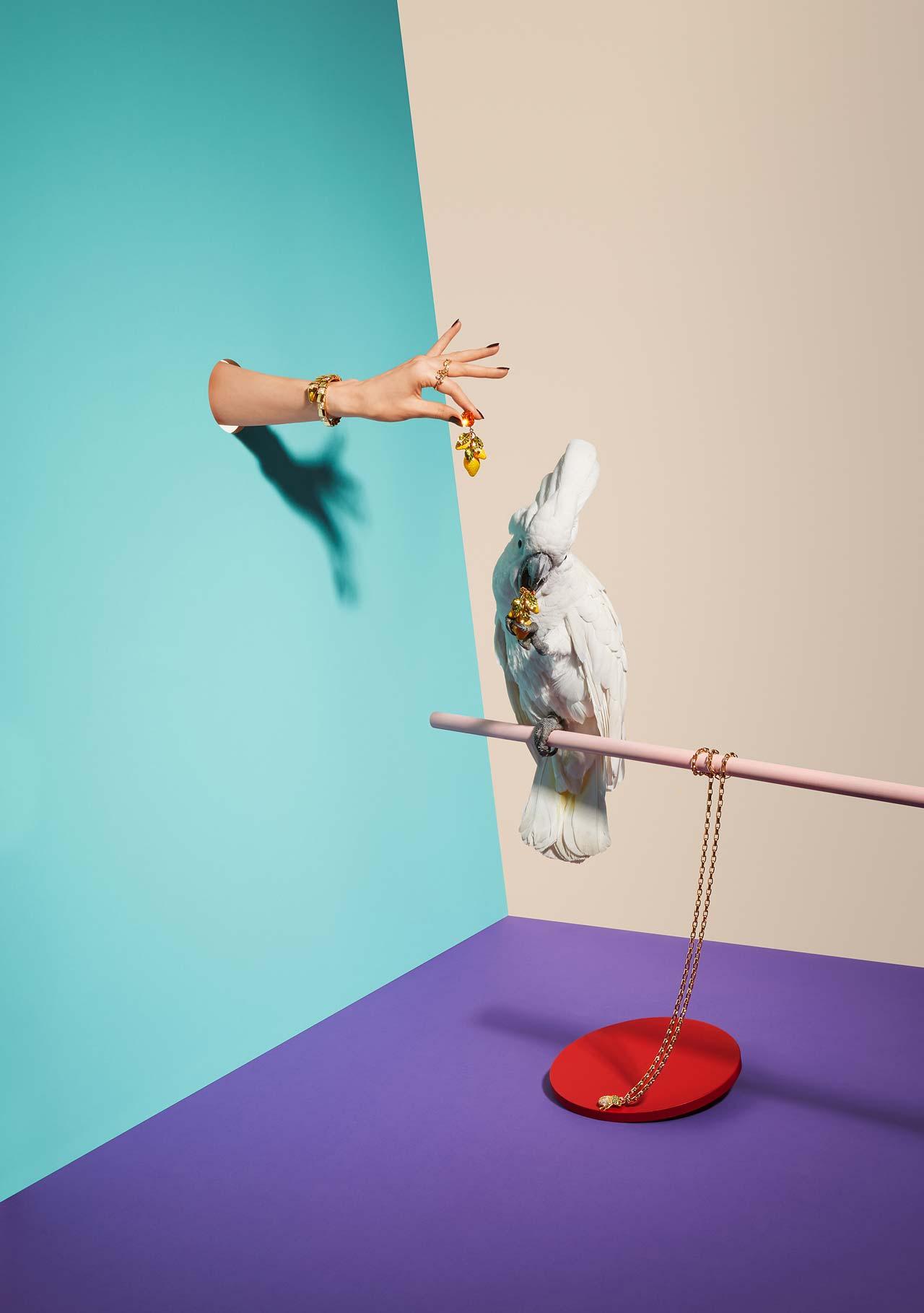 Mit »Animals vs. Jewelry« wurde Oliver Schwarzwald in der Kategorie »Still Life« Zweiter.