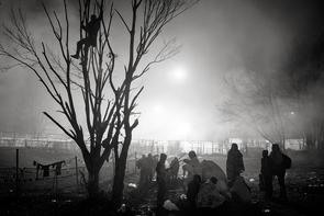 Geflüchtete sind im sogenannten »Niemandsland« vor dem österreichischen Spielfeld (im Hintergrund) festgesetzt und brechen Äste von den Bäumen, um sich bei den niedrigen Temperaturen zu wärmen. Sentilj, Slowenien, 18. November 2015.