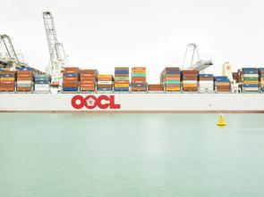 Containerentladung, Rotterdam, Niederlande.