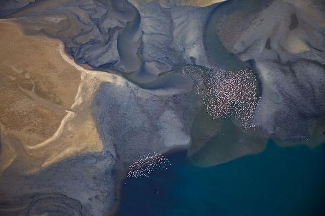 Fliegende Flamingos über der Lagune von Sandwich Harbour, Namibia.